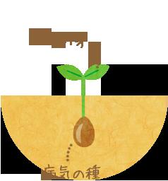 種は残ったままなので、再び病気の「芽」が現れることもある。
