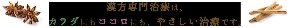 漢方専門治療は、カラダにもココロにも優しい治療です。