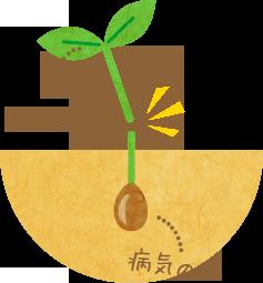 病気の「芽」を取り除く。